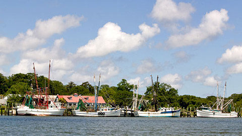 Fishing & Boat Rentals