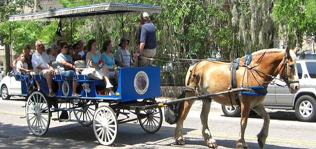 Beaufort Sightseeing Tours